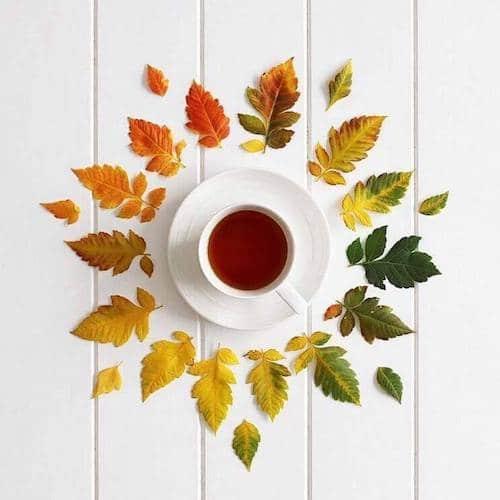 Pique Tea - Certified Paleo, KETO Certified - Paleo Foundation