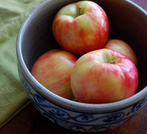 Homemade Baked Cinnamon Apple Chips Recipe