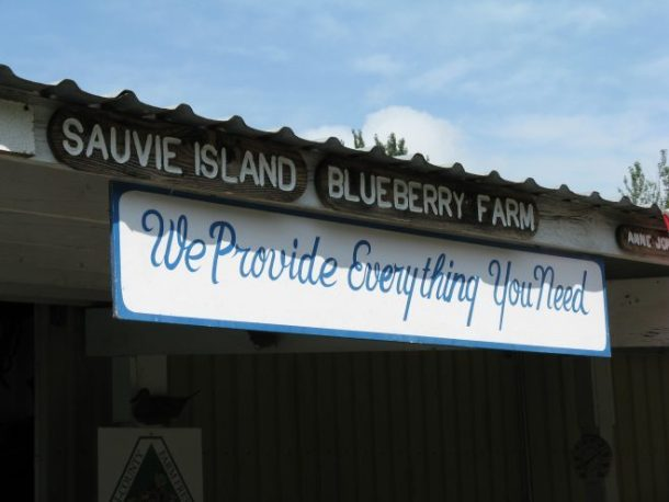 Welcome to the Sauvie Island Blueberry Farm
