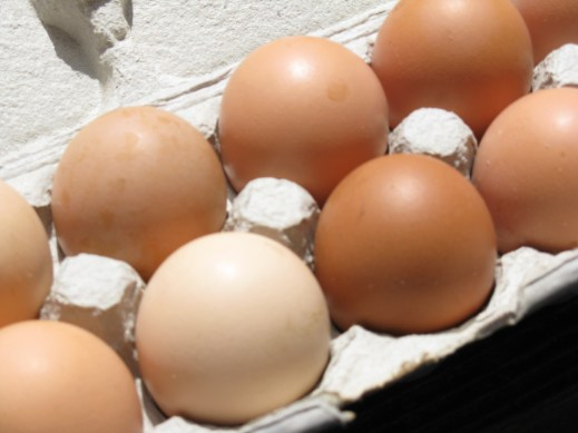 Farm-fresh pastured chicken eggs