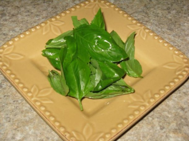 Mom's fresh basil