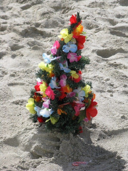 This cute little tree was on the sands of Waikiki Beach. On the other side of the tree, there was a funny little manger scene.