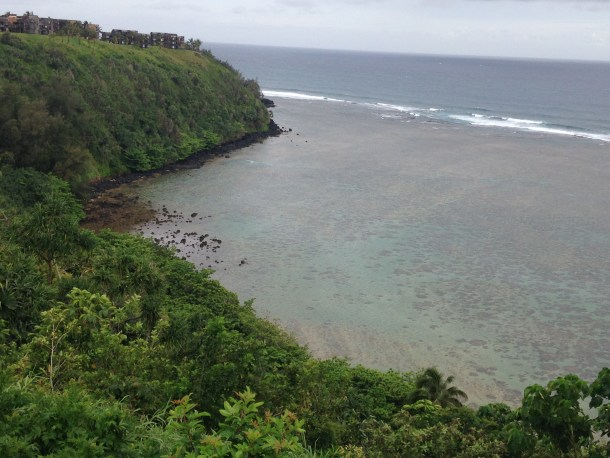An amazing view during a morning walk, our first day in Kauai.