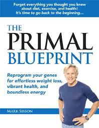 primal_blueprint