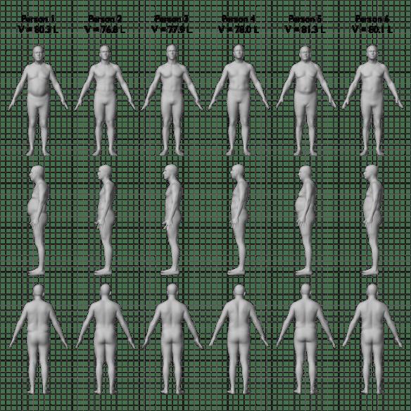 All-bodies_no-caption_1