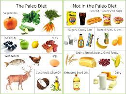caveman\u0027 or paleo diet in the news in new zealand julianne\u0027s paleocaveman diet wins science nod