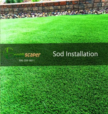 Sod Installation in Regina
