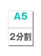 A5_2p_w_10000