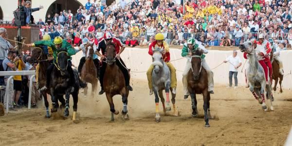 Accoppiate Fantini e cavalli del Palio di 2018