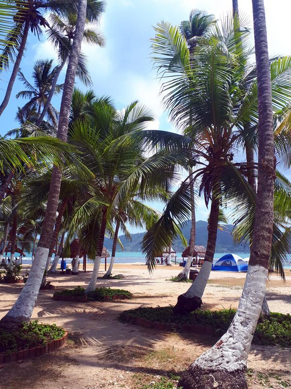 Isla Mamay beach area
