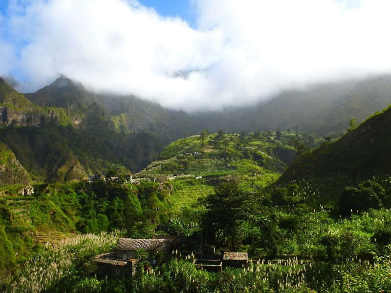 santo antao cape verde rainforest
