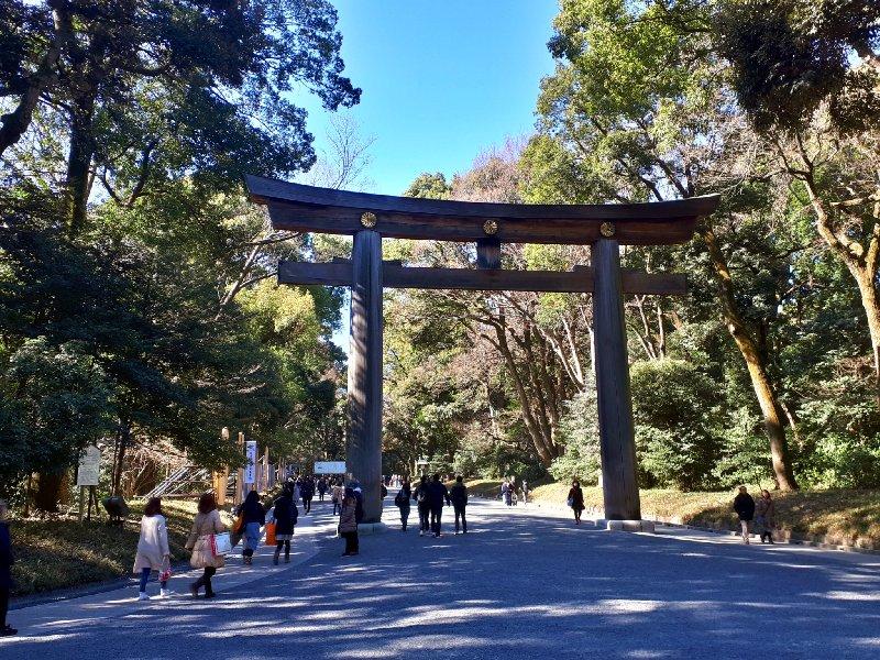 torii meiji shrine tokyo