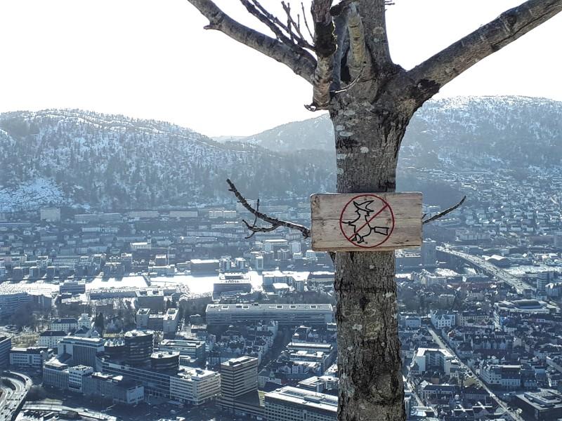 witch sign mount floyen