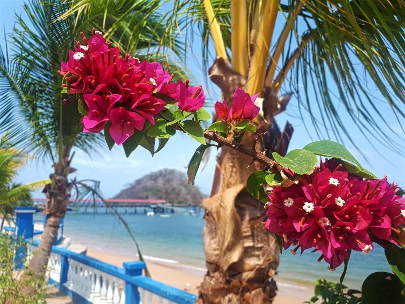 taboga island day trip