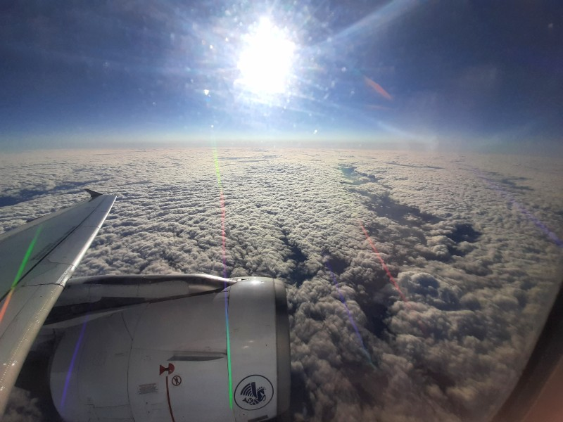 window view plane