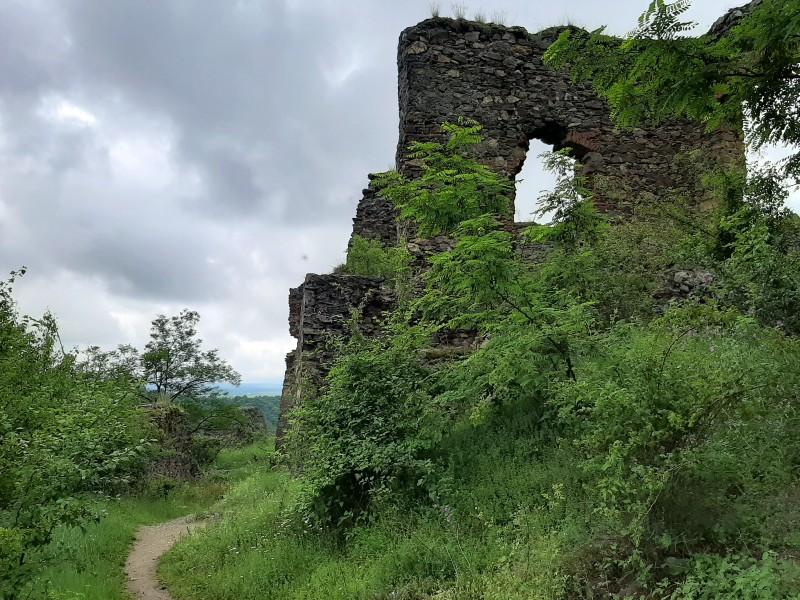 castle ruin soimos