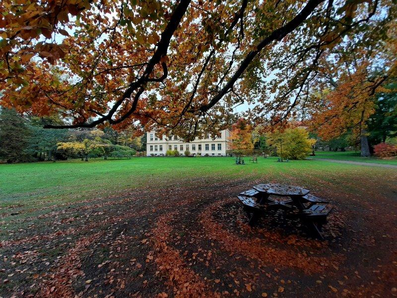 lund botanical garden autumn