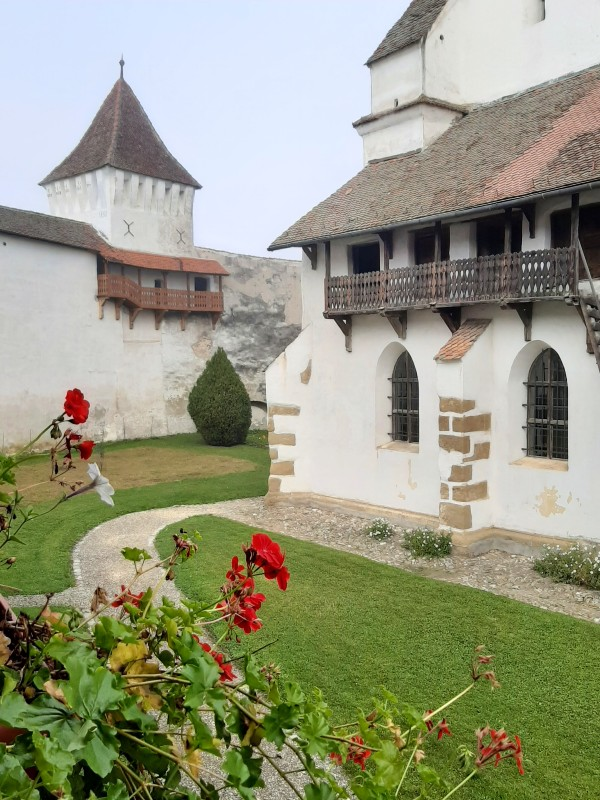 harman fortified church brasov