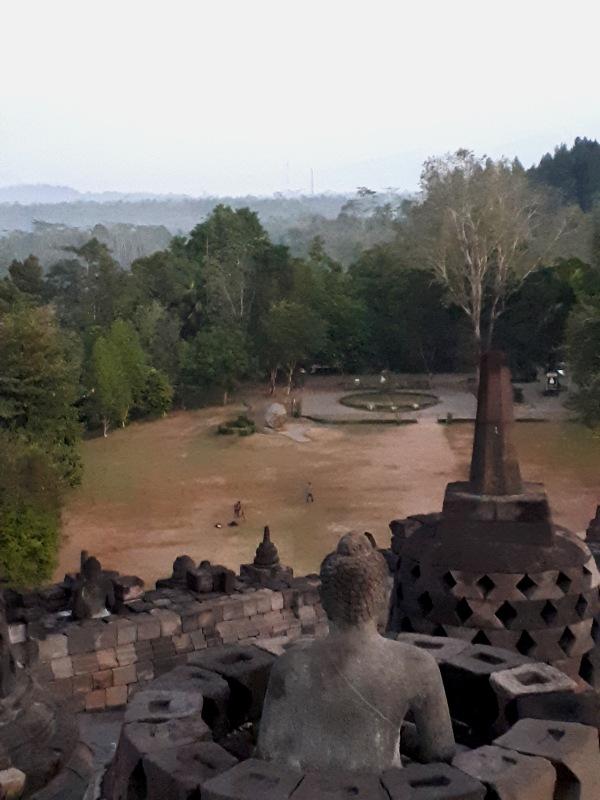 temple jungle java