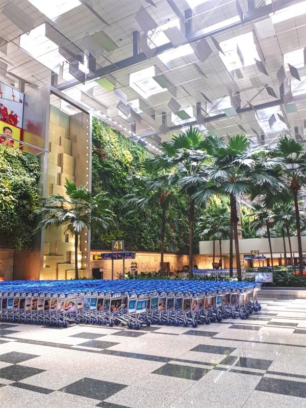 singapore changi airport baggage hall