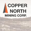 Copper-North-Logo
