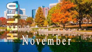 Hello November in Charlotte NC