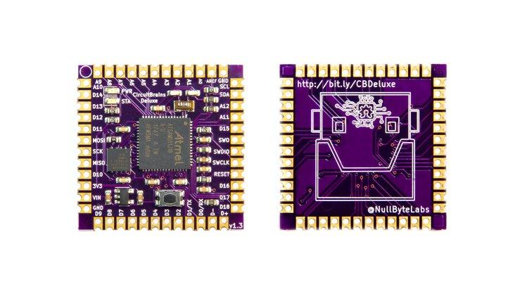 CircuitBrains Deluxe: An MCU based Computer Module 1