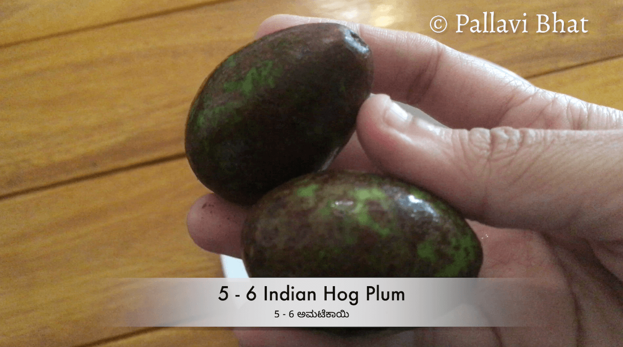 Indian Hog Plum Curry                                                                                                                                                                                                                                                                                     Indian