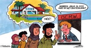 Afbeeldingsresultaat voor sociale woning  fraude cartoon