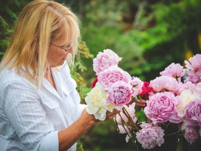 Woman arranging cut peony flowers in the garden at the Palmer Museum