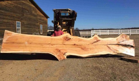live edge wood slab unfinished raw slab wood palmer rustic furniture stigler oklahoma