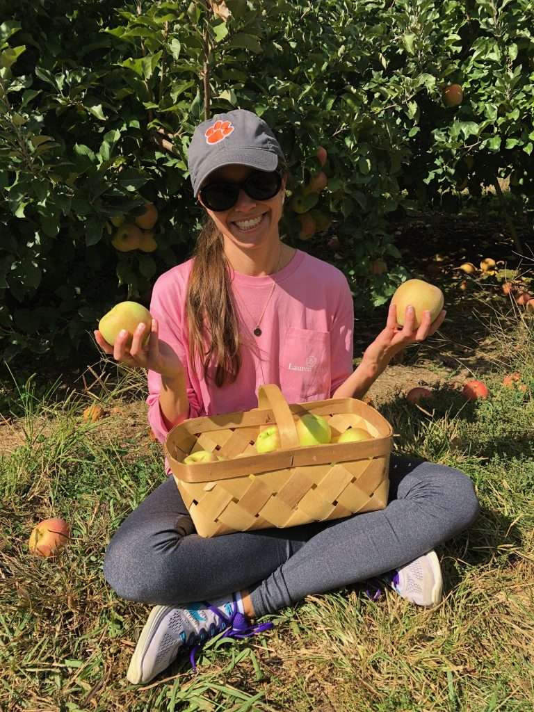 Apple-picking Stepp's Hillcrest Orchard