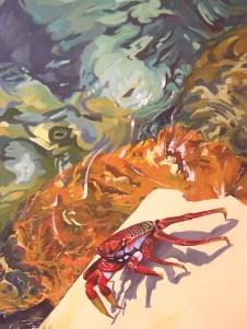 Crab On Seashore / Cangrejo en orilla