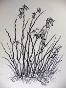 dibujos de otoño a rotulador