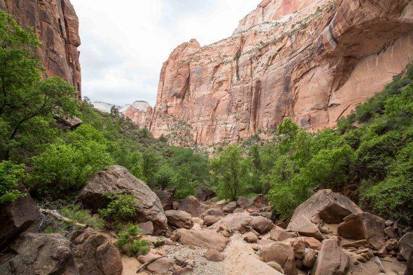 Pine Creek-123