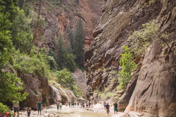 The Narrows | Zion | Palms to Pines