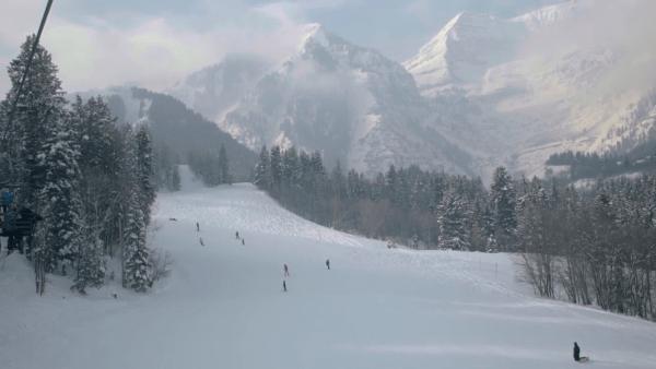Sundance | Provo | Palms to Pines