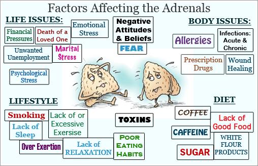adrenal-fatigue-causes