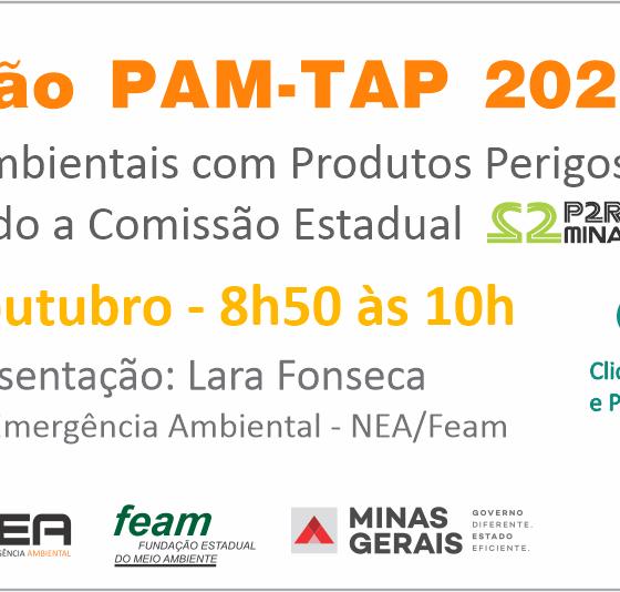 9ª Reunião PAM-TAP 2020 Online Núcleo de Emergência Ambiental (NEA / FEAM)
