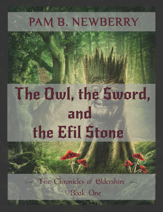 Book Cover_ The Owl, the Sword, & the Efil Stone