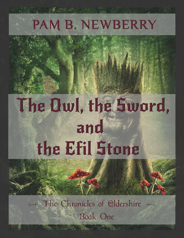 Welcome here to check out the latest of Pam's books, this is the Book Cover of The Owl, the Sword, & the Efil Stone