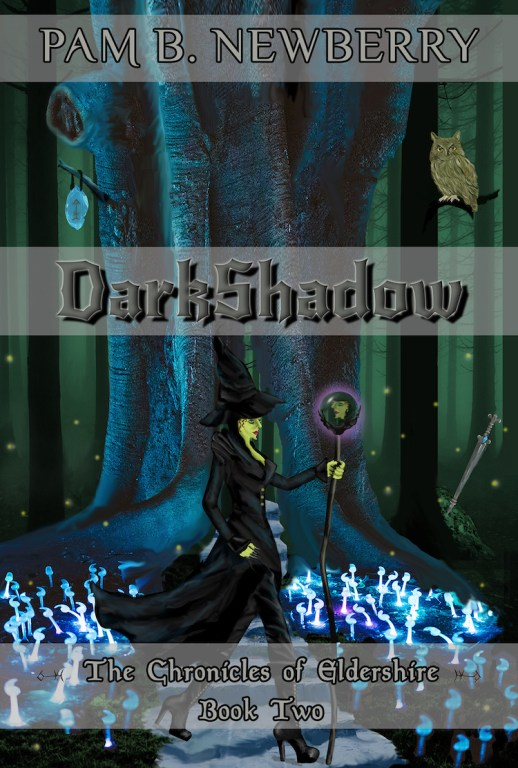 Cover - Book Two - DarkShadow - The Chronicles of Eldershire - Assumption made