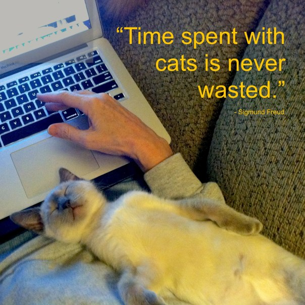 timewithcats