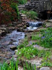Cheekwood Gardens, Nashville, TN