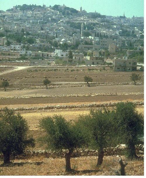 Map_Bethlehem_Shephards_Field