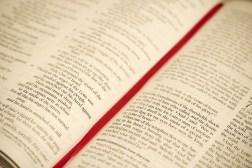 bible-blur-book-267709