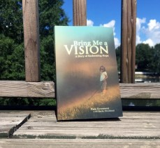 Bring-Me-a-Vision