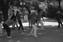 Ball and racket dancing