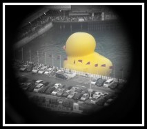 Looking down at the rubber duck through a viewer