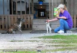 Jessie outside of trailer in FL